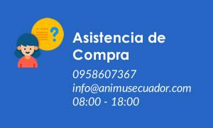 Animus Ecuador - Estimulación Temprana